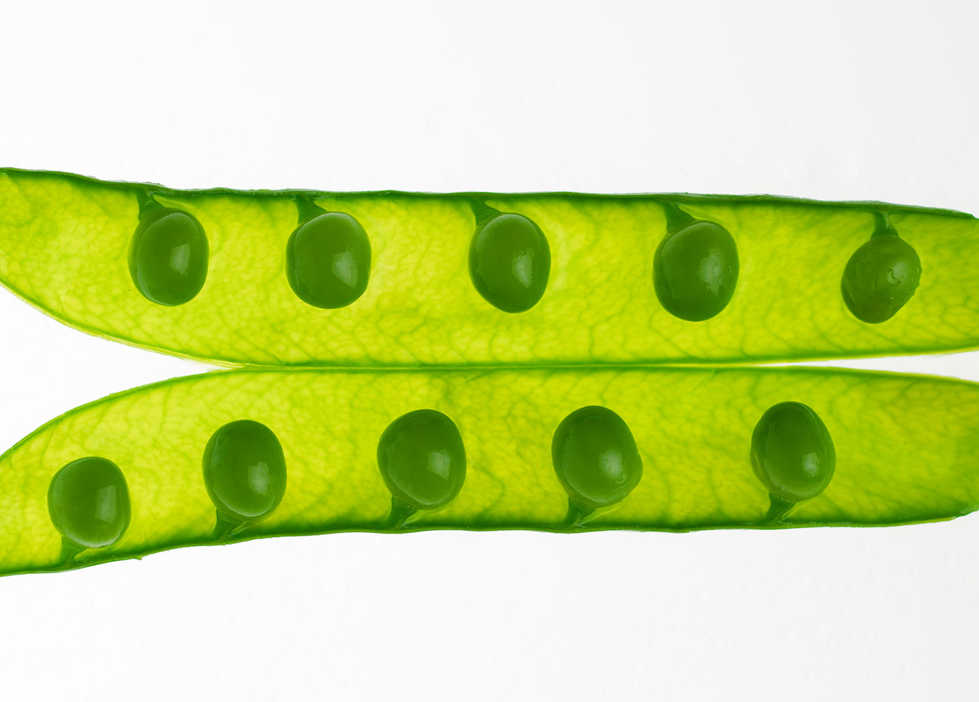 guisantes-loxe-mareiro-abastos2.0-elfotogastro-fotografo-de-comida-fotografo-gastronomico